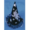 Witch Hat Cardboard 1 Size
